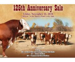 LeForce Herefords 125th Anniversary Production Sale Friday, November 16th, 2018 - 1pm